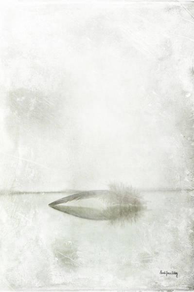 Photograph - Feather Reflections by Randi Grace Nilsberg