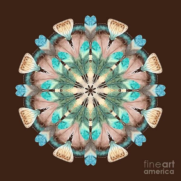 Wall Art - Digital Art - Feathers by Mary Machare