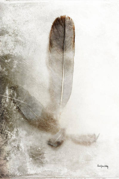 Photograph - Feathers Together by Randi Grace Nilsberg