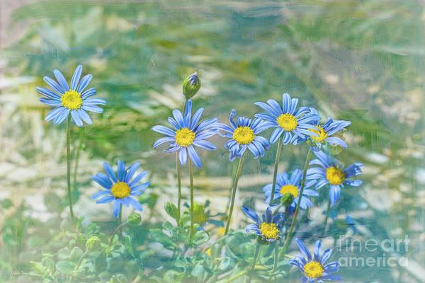 Feeling Blue Art Print