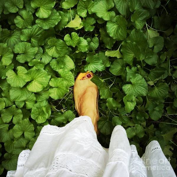Photograph - Feet Around The World #3 by Edit Kalman