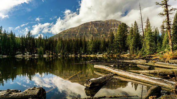 Photograph - Fehr Lake by TL Mair