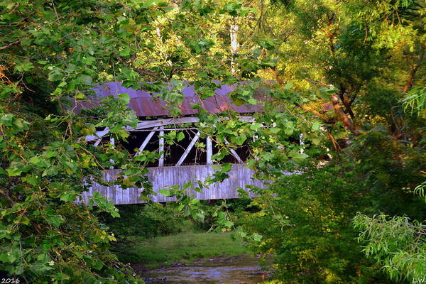 Photograph - Felton Covered Bridge by Lisa Wooten