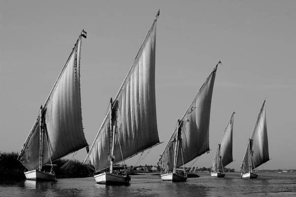 Photograph - Feluccas On River Nile by Peter OReilly