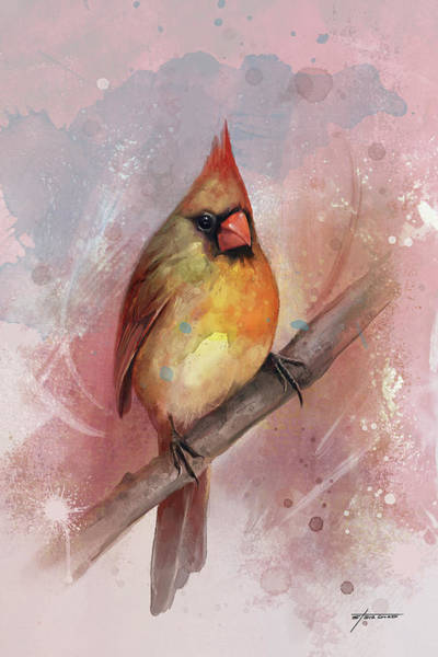 Wall Art - Digital Art - Female Cardinal by Steve Goad