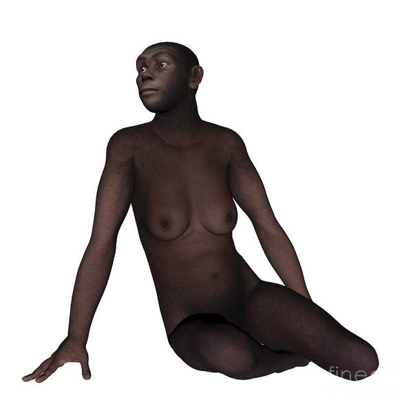 Humanity Digital Art - Female Homo Erectus Sitting by Elena Duvernay