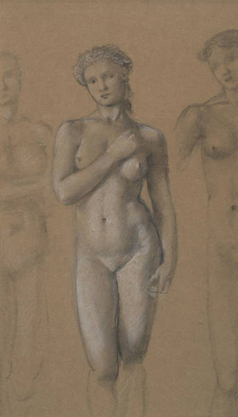 Drawing - Female Nude by Edward Burne-Jones