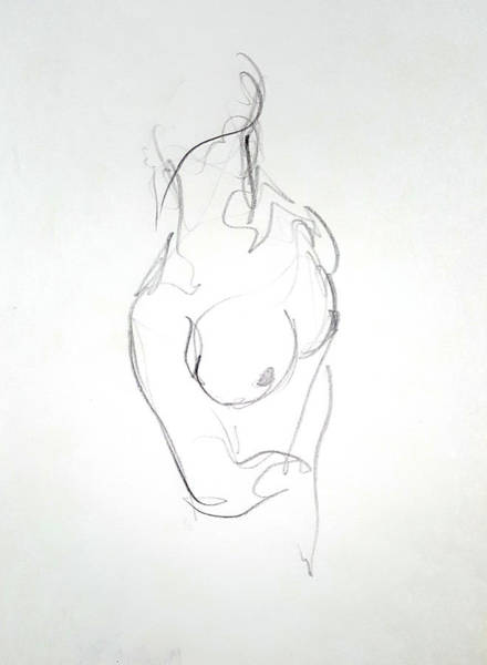 Drawing - Female Nude Torso by Dave Martsolf
