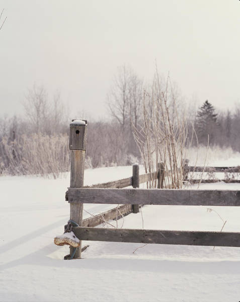 Fence Post Photograph - Fence And Birdhouse In The Snow by Gillham Studios