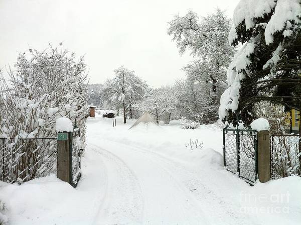 Photograph - Fence And  Gate In Winter by Wilhelm Hufnagl
