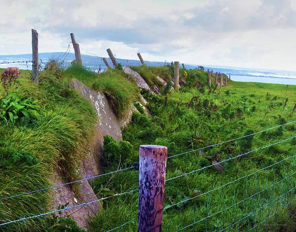 Photograph - Fence At Moher by Coleman Mattingly