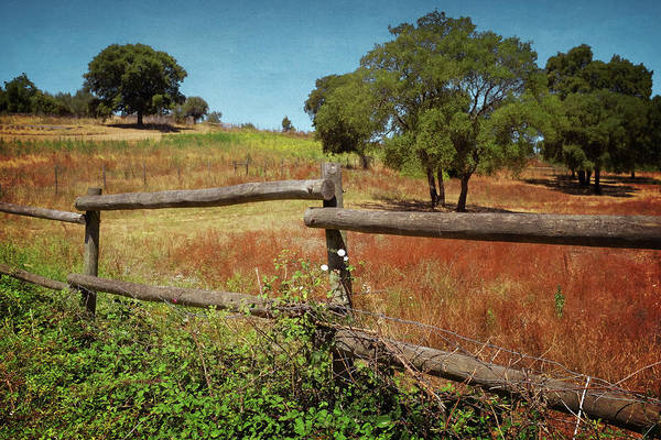 Wall Art - Photograph - Fence In Countryside by Carlos Caetano