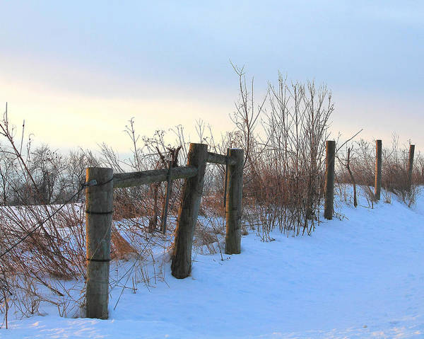 Photograph - Fence In The Snow by Angela Murdock