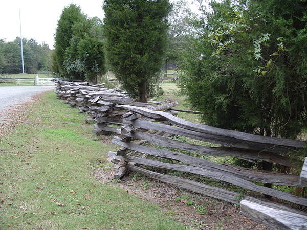 Wall Art - Photograph - Fence by Jamie Mcatee