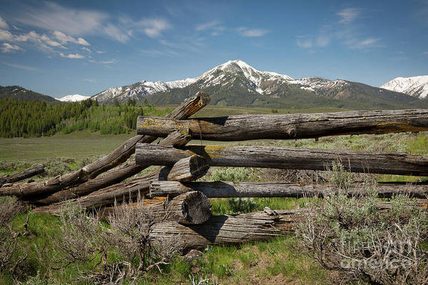Wall Art - Photograph - Fence Juncture by Idaho Scenic Images Linda Lantzy
