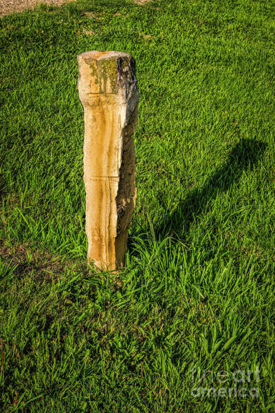 Photograph - Fence Post by Jon Burch Photography