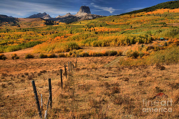 Photograph - Fence Posts To The Chief by Adam Jewell
