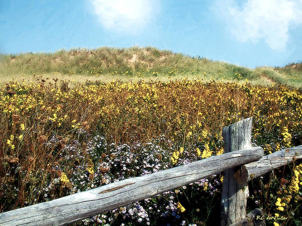 Prince Edward Island Painting - Fence With A View by RC DeWinter
