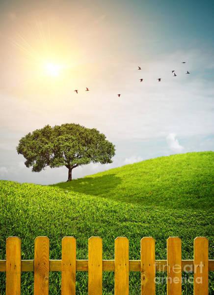 Wall Art - Photograph - Fenced Grass Hills II by Carlos Caetano