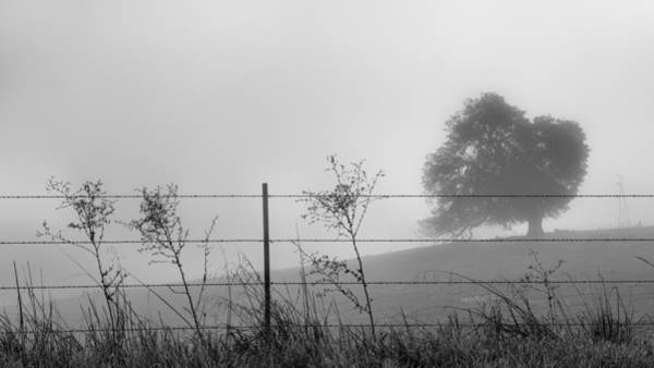 Wall Art - Photograph - Fenced In by Joseph Smith