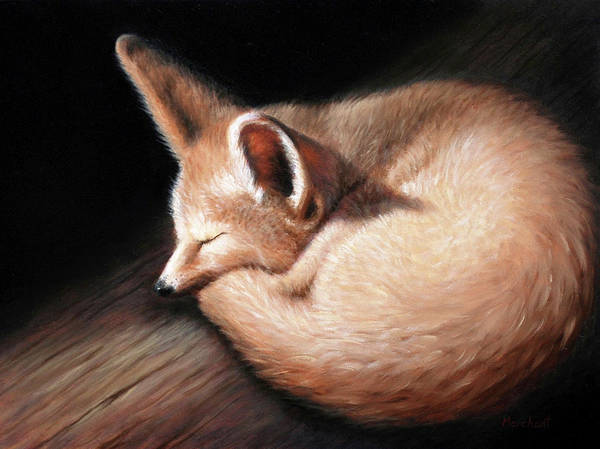 Painting - Fennec Fox by Linda Merchant