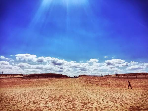 Photograph - Fenwick Island State Park by Chris Montcalmo