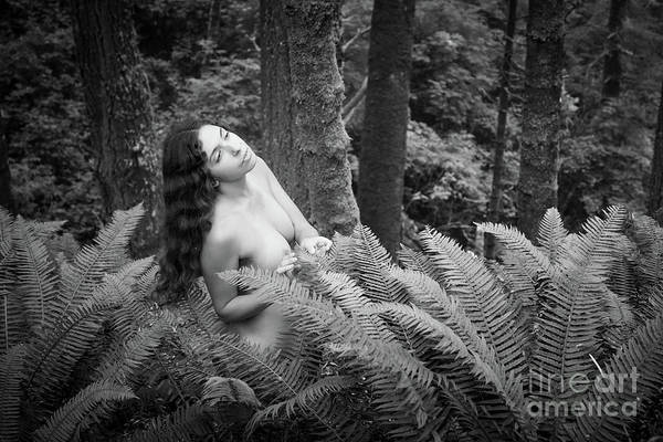 Photograph - Fern Maiden by Inge Johnsson