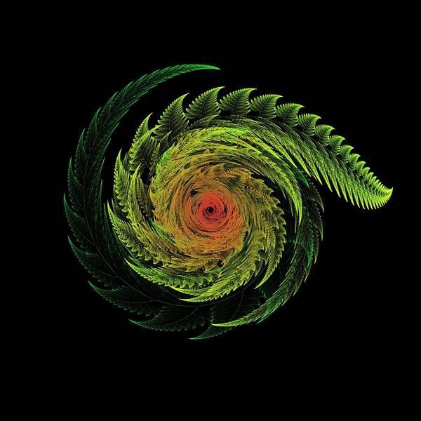 Recursion Wall Art - Digital Art - Fern Swirl by Thomas Pendock