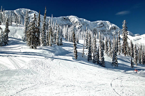 Photograph - Fernie Bc Ski Slopes by Adam Jewell