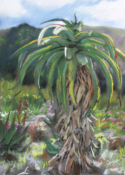 Pastel - Fernkloof Aloe by Christopher Reid