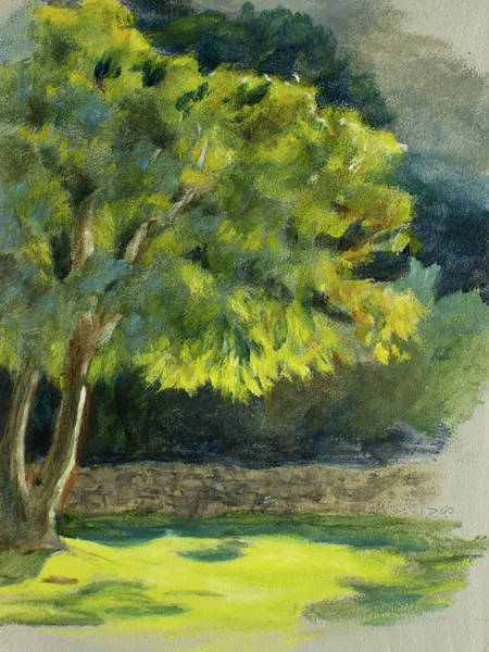 Painting - Fernkloof Tree by Christopher Reid