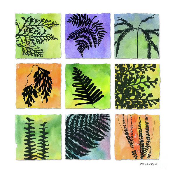 Painting - Ferns Of Hawaii by Diane Thornton