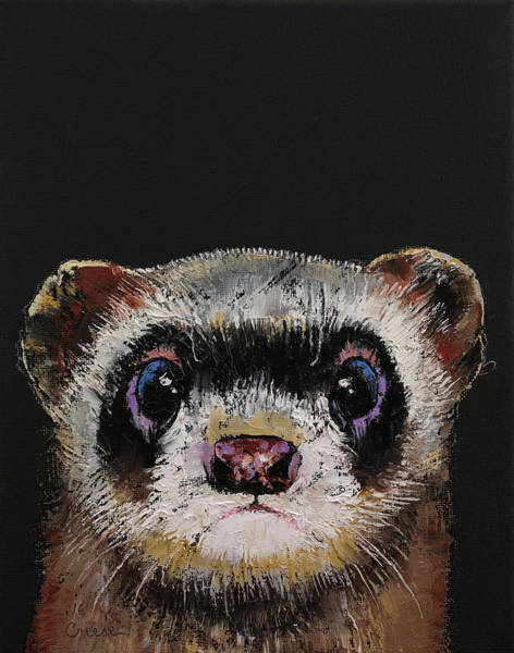 Ferrets Wall Art - Painting - Ferret by Michael Creese