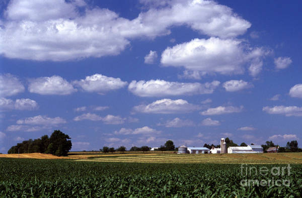 Photograph - Fertile Land by Paul W Faust -  Impressions of Light