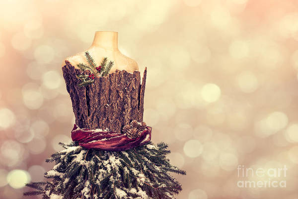 Mannequin Photograph - Festive Christmas Mannequin by Amanda Elwell