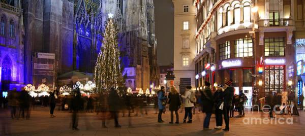 Photograph - Festive Vienna by David Birchall
