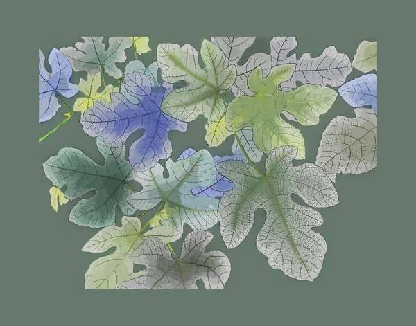 Digital Art - Ficus Carica by Gina Harrison