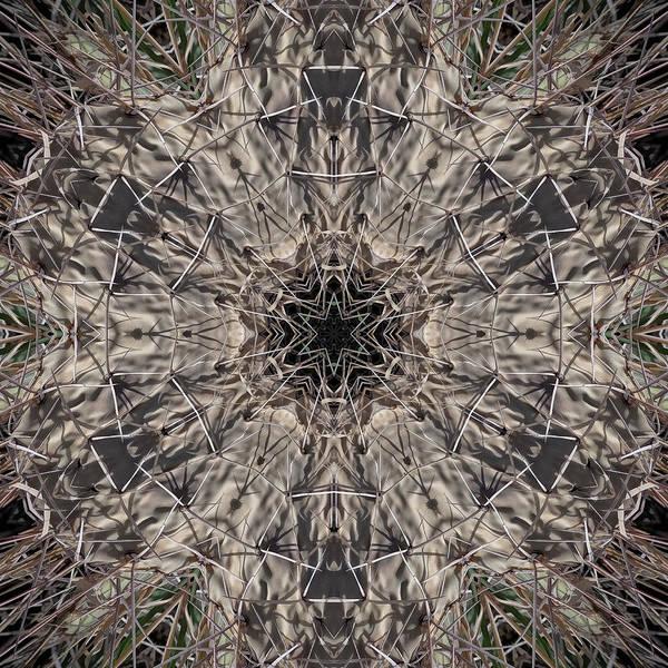Digital Art - Fiddle Sticks by Becky Titus