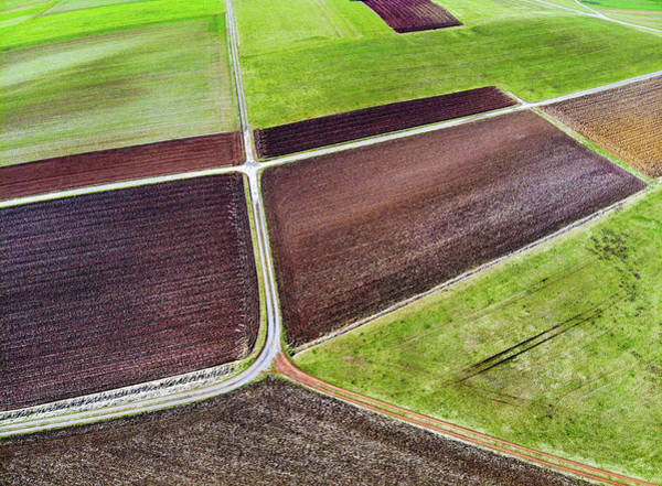 Photograph - Field And Meadow Pattern From Above by Matthias Hauser