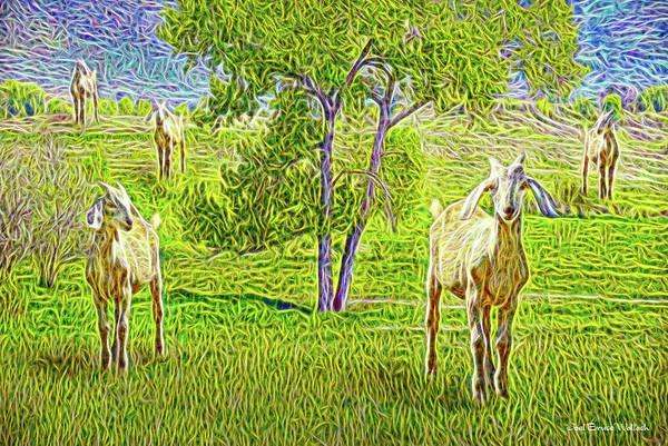 Digital Art - Field Of Baby Goat Dreams by Joel Bruce Wallach
