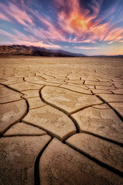 Wall Art - Photograph - Field Of Cracks by Nicki Frates