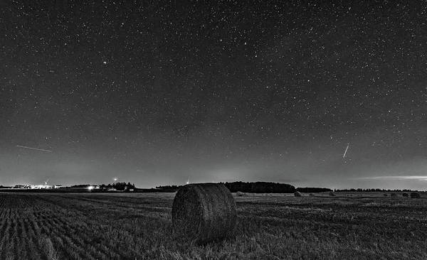 Perseid Wall Art - Photograph - Field Of Dreams - Night Of The Perseids Bw by Steve Harrington