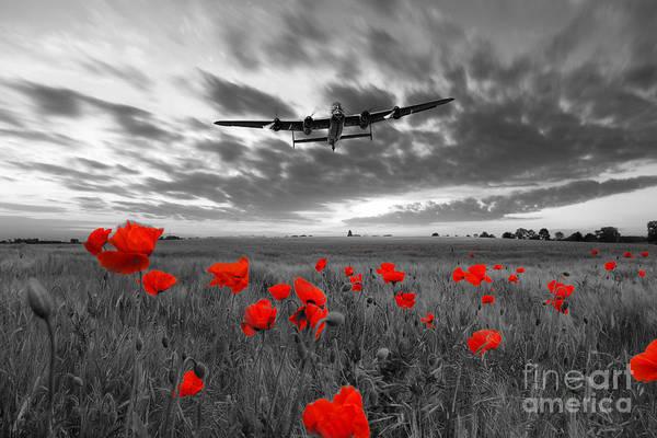 Tribute Digital Art - Field Of Dreams - Red by J Biggadike