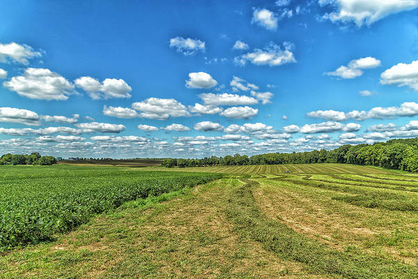 Wall Art - Photograph - Field Of Dreams by Tru Vision Photography