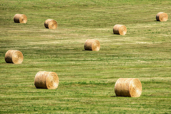 Photograph - Field Of Large Round Bales Of Hay by Todd Klassy