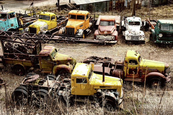 Photograph - Field Of Old Trucks by M G Whittingham