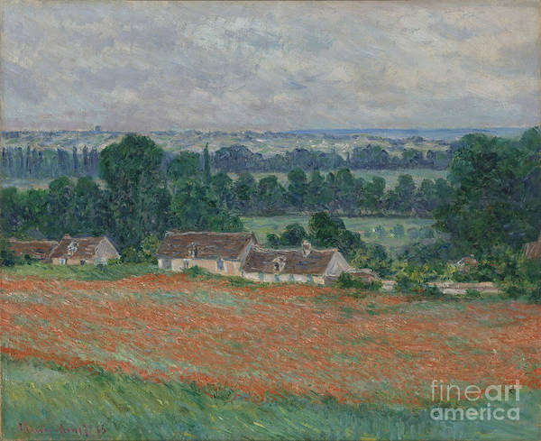 Painting - Field Of Poppies by Celestial Images