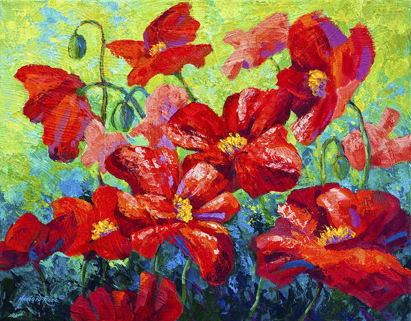 Red Floral Painting - Field Of Red Poppies II by Marion Rose