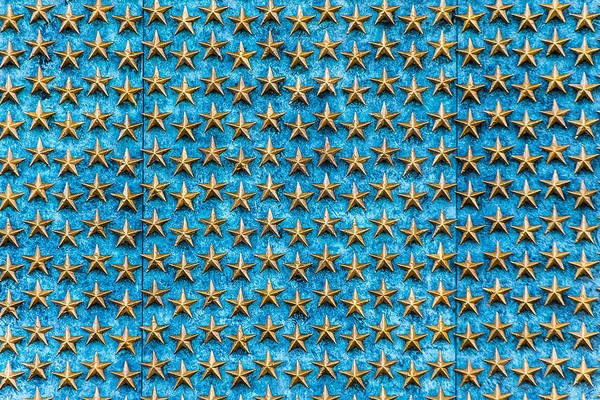 Photograph - Field Of Stars by SR Green