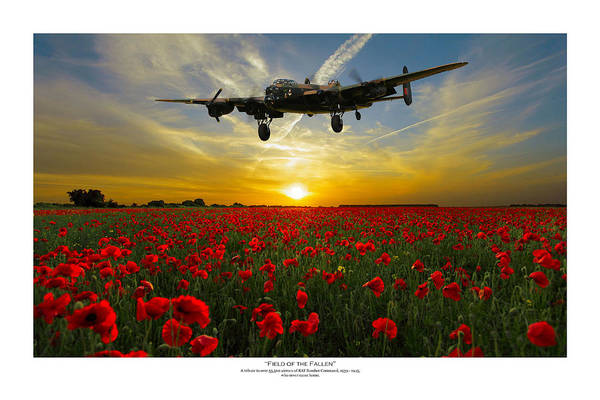Avro Wall Art - Digital Art - Field Of The Fallen - Titled by Mark Donoghue